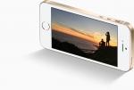Перед выбором: iPhone 6s, SE или 5s?
